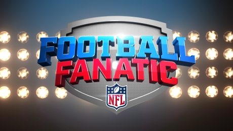 NFL FOOTBALL FANATIC